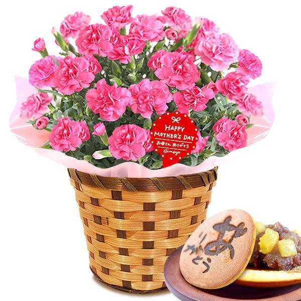 母の日 ギフト 花 母の日 プレゼント カーネーション 鉢植え 花鉢 お菓子 スイーツ 2020 ギフトランキング 5号鉢 oimoya 21