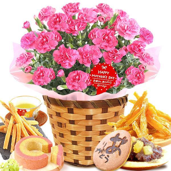 母の日 花 ギフト 母の日プレゼント 2019 mothersday 鉢植え スイーツ カーネーション以外|oimoya|20