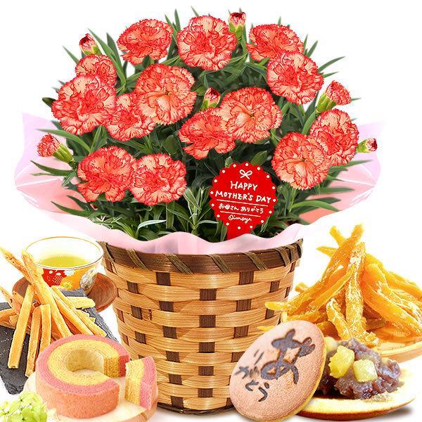母の日 花 ギフト 母の日プレゼント 2019 mothersday 鉢植え スイーツ カーネーション以外|oimoya|21