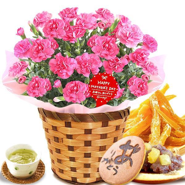 母の日 花 ギフト 母の日プレゼント 2019 mothersday 鉢植え スイーツ カーネーション以外 oimoya 16
