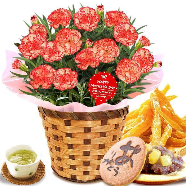 母の日 花 ギフト 母の日プレゼント 2019 mothersday 鉢植え スイーツ カーネーション以外 oimoya 17