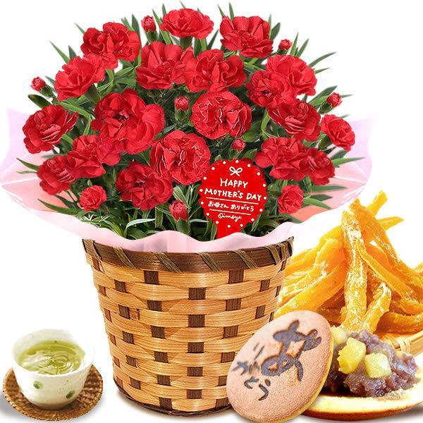 母の日 花 ギフト 母の日プレゼント 2019 mothersday 鉢植え スイーツ カーネーション以外 oimoya 15