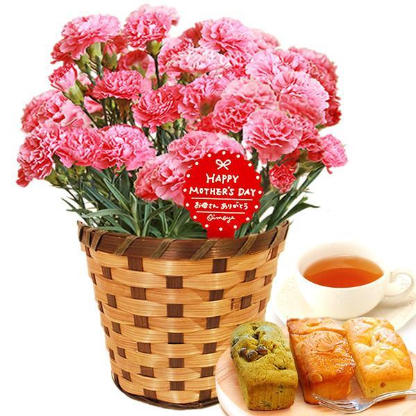母の日 花 ギフト 母の日プレゼント 2019 mothersday 鉢植え スイーツ カーネーション以外 oimoya 19