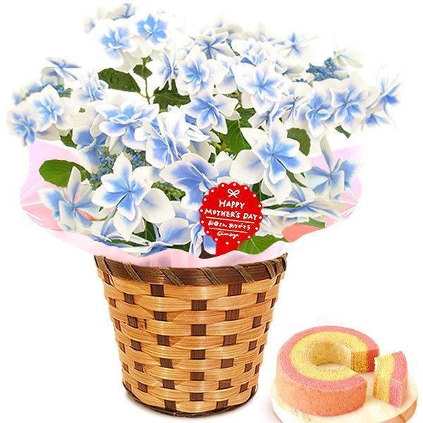 母の日 ギフト 母の日プレゼント ランキング mothersday 2019 花 鉢植え 花 スイーツ|oimoya|17