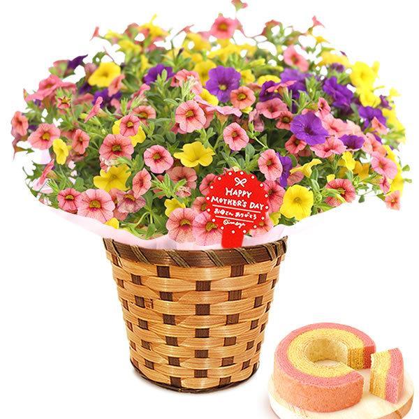 母の日 ギフト 母の日プレゼント ランキング mothersday 2019 花 鉢植え 花 スイーツ|oimoya|32