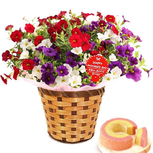 母の日 ギフト 母の日プレゼント ランキング mothersday 2019 花 鉢植え 花 スイーツ|oimoya|33