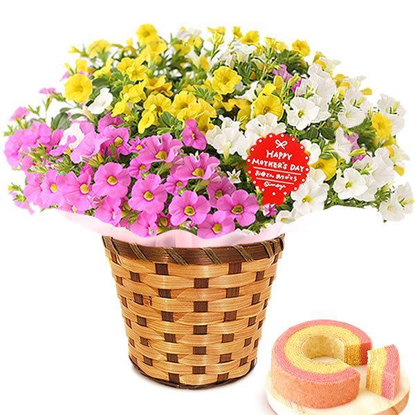 母の日 ギフト 母の日プレゼント ランキング mothersday 2019 花 鉢植え 花 スイーツ|oimoya|31