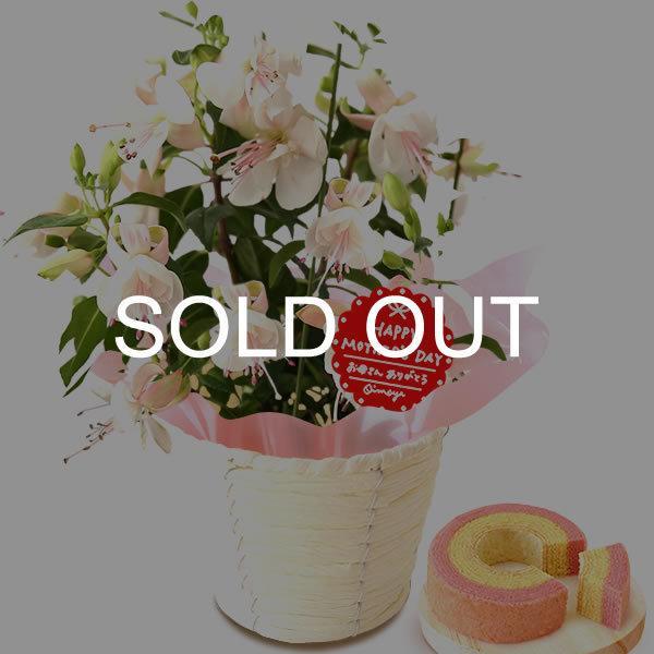 母の日 花 ギフト 母の日プレゼント 2019 ランキング mothersday 鉢植え スイーツ カーネーション以外|oimoya|23