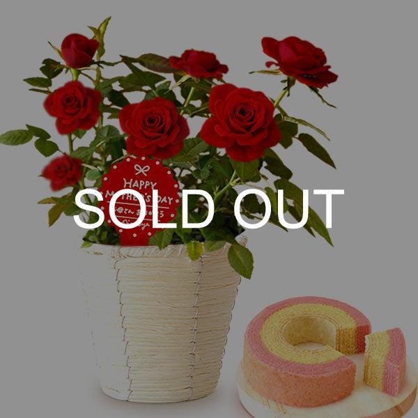 母の日 花 ギフト 母の日プレゼント 2019 ランキング mothersday 鉢植え スイーツ カーネーション以外|oimoya|16