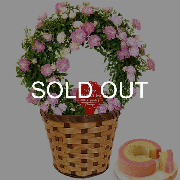 母の日 ギフト 母の日プレゼント ランキング mothersday 2019 花 鉢植え 花 スイーツ|oimoya|26