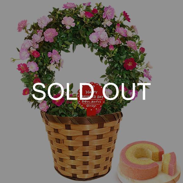 母の日 ギフト 母の日プレゼント ランキング mothersday 2019 花 鉢植え 花 スイーツ|oimoya|25
