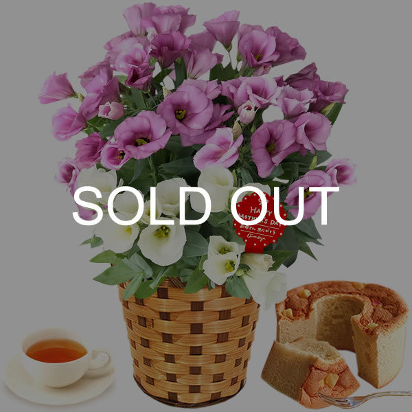 母の日 ギフト 母の日プレゼント ランキング mothersday 2019 花 鉢植え 花 スイーツ|oimoya|30