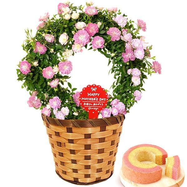 母の日 ギフト 花 母の日 プレゼント 花とスイーツ 2020 ギフトランキング 紫陽花 アジサイ バラ 鉢植え お菓子|oimoya|27