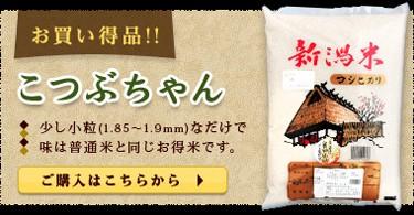 新潟県産コシヒカリ お買い得品 こつぶっこ 少し小粒(1.85〜1.9mm)なだけで味は一等米と同じお得米です