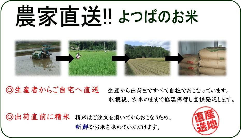 農家直送 新潟県産コシヒカリ