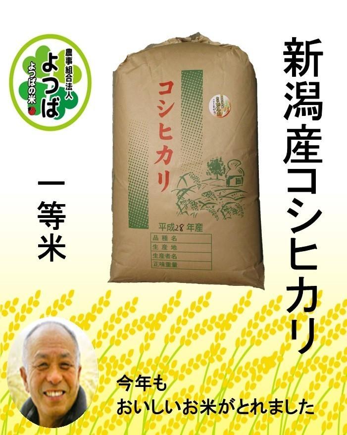 新潟産コシヒカリ 一等米玄米30kg