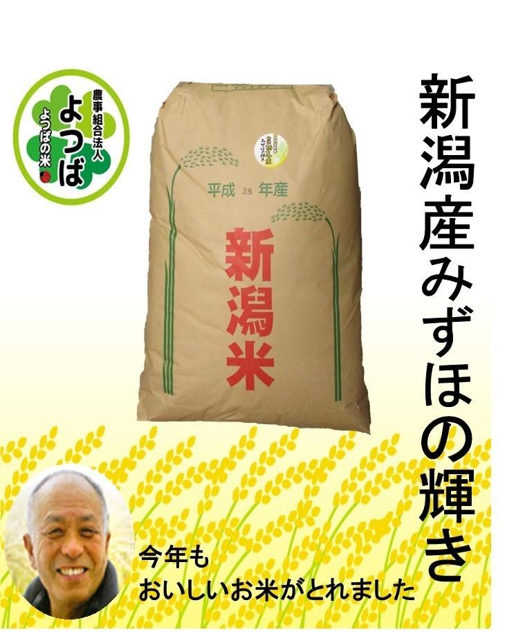 みずほの輝き玄米30kg