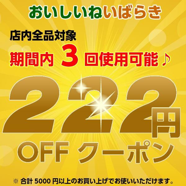 全商品対象222円OFFクーポン!