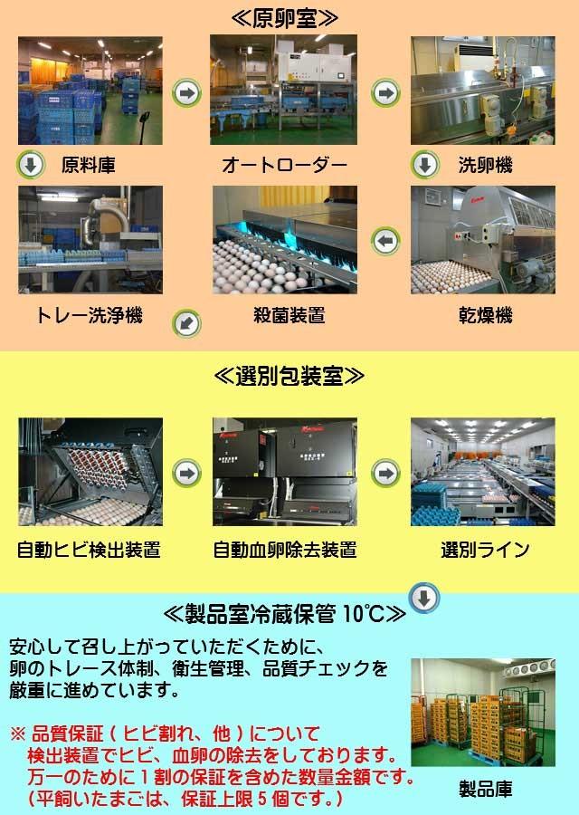 鶏卵センター,卵,たまご,タマゴ,玉子,茨城,やさと,産直たまご,送料無料,お取り寄せ,ギフト