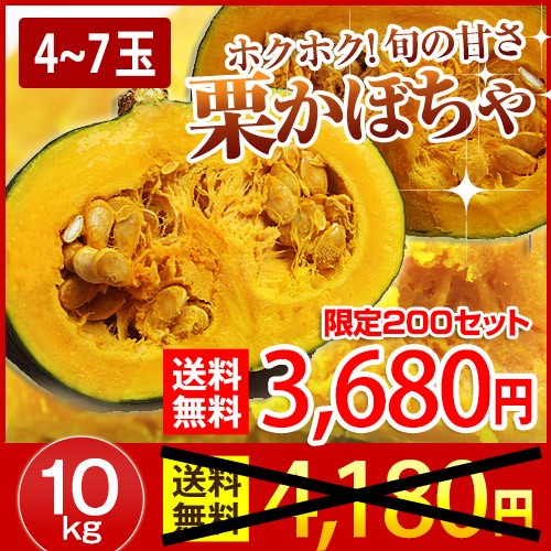 北海道産 産地直送 栗かぼちゃ 旬