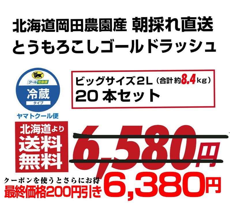 ゴールドラッシュ2Lサイズが6580円