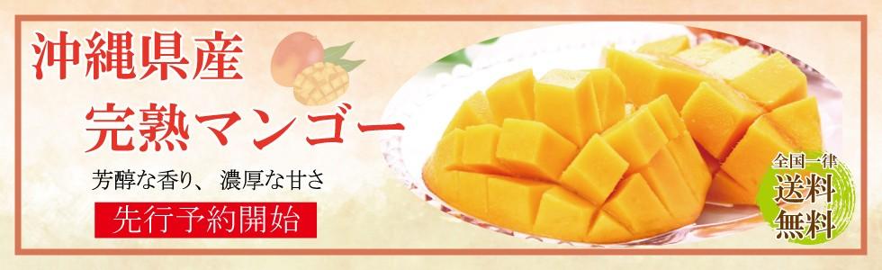 マンゴー予約販売