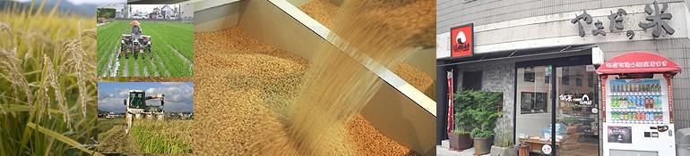 岡山の米専門店「平成食糧」米工房やまだ/米屋のにぎりめし 山田村(岡山県岡山市)