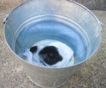 ウエスが完全に浸る程度、バケツに水を入れる。