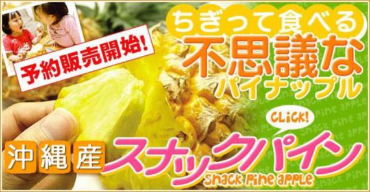9トン以上の販売実績沖縄県産完熟スナックパイン