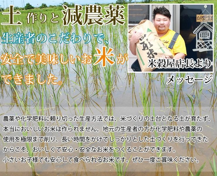 土作りにこだわりミネラルたっぷりの水がはぐくんだ自慢のお米