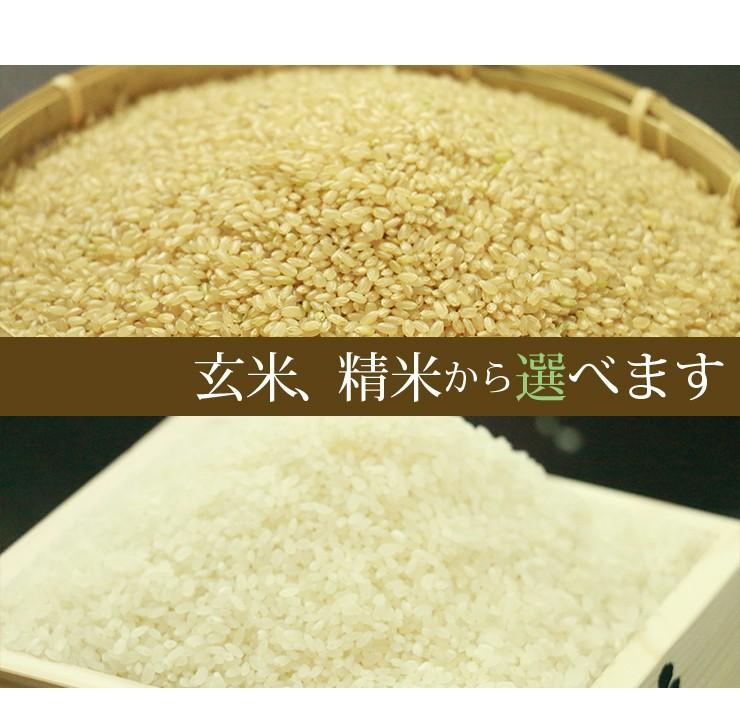 玄米、精米から選ぶ