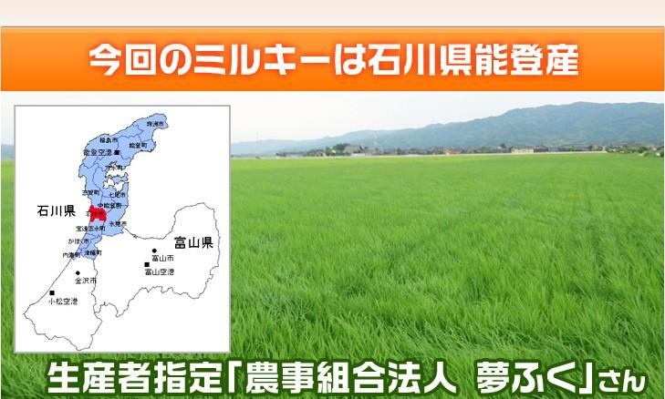 今回のミルキーは石川県能登産