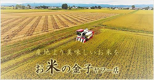 産地より美味しいお米を お米の金子ヤフー店