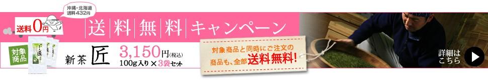 送料無料新茶匠 送料無料 新茶の深蒸し茶をたっぷり合計300gで3000円 他のお買い上げ商品も送料無料で一緒にお届け!