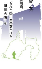 掛川市お茶品評会出品茶 掛川の誉・掛川の香 深蒸し茶