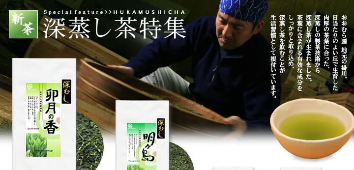 深蒸し茶特集 おおむら園地元の掛川。日当たりのよい丘で生育した肉厚の茶葉に合った、深蒸しの製茶技術から誕生しました。