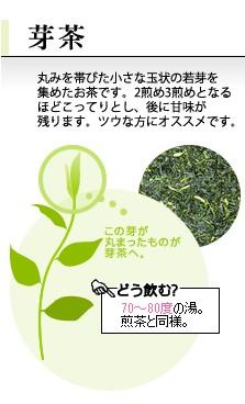 丸みを帯びた、小さな玉状の若い芽を集めたお茶です。わかわかしい甘味と濃厚さが特徴です。