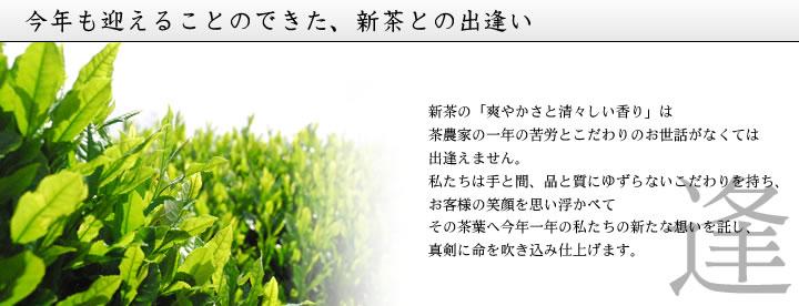 茶農家の一年の苦労とこだわりのお世話によって育まれた新茶葉を新たな想いを託して仕上げます。