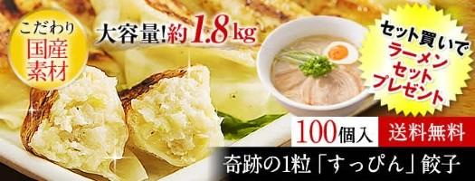 国産餃子100個