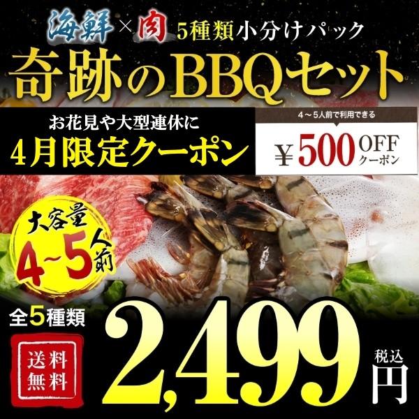 春のBBQオープン記念500円OFFクーポン