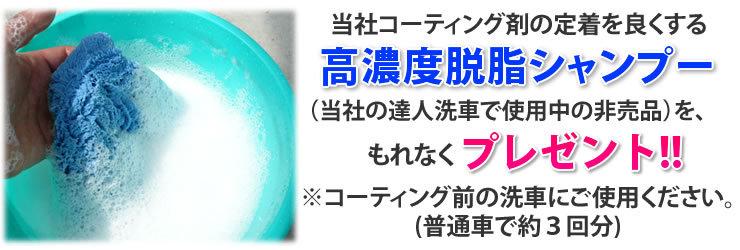 当社コーティング剤の定着を良くする高濃度脱脂シャンプー(当社の達人洗車で使用中の非売品)を、もれなくプレゼント!コーティング前の洗車にご使用ください