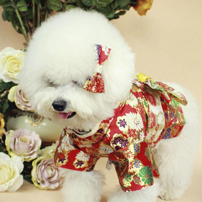 犬洋服 着物