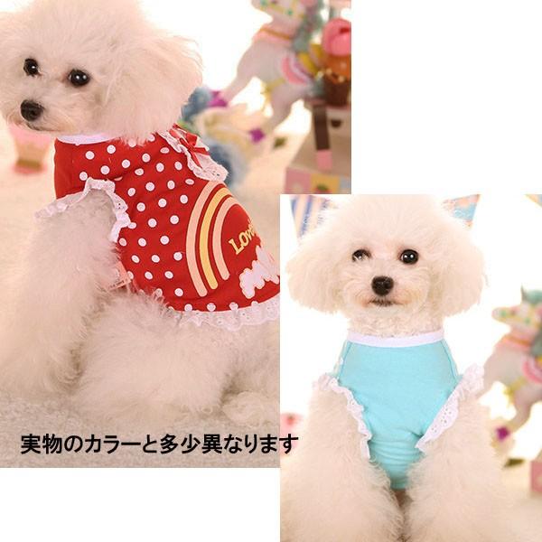 犬の服 パンツ