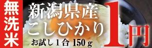 新潟県産こしひかり