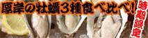 厚岸産カキえもん、まるえもん、仙鳳趾牡蠣の食べ比べセットを北海道からお取り寄せ。