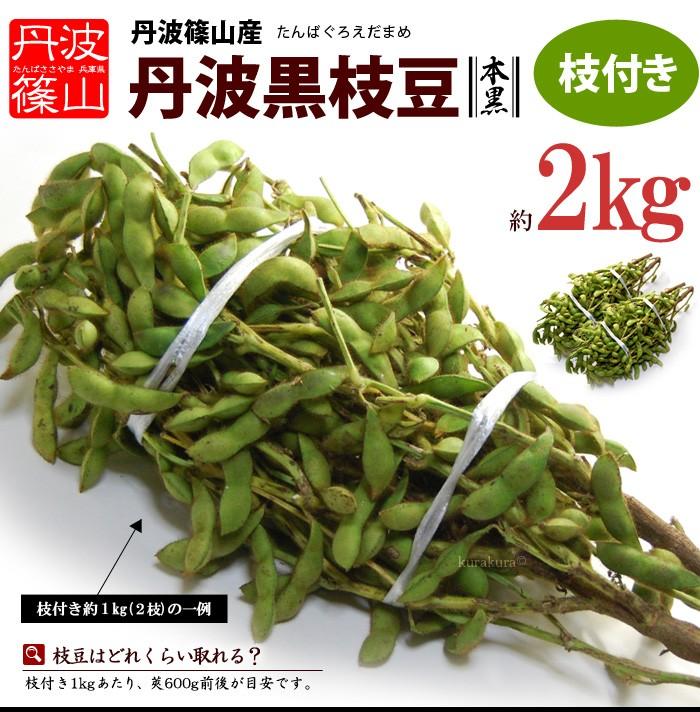 丹波篠山の黒枝豆(枝付き2kg)販売イメージ