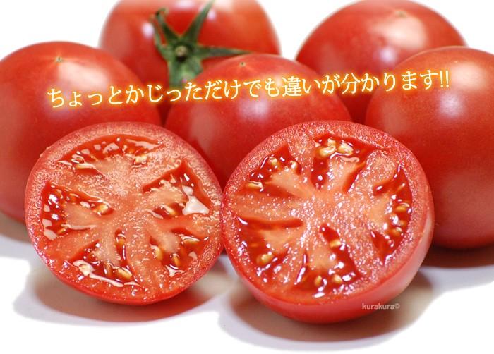 違いの分かる美味しいフルーツトマト