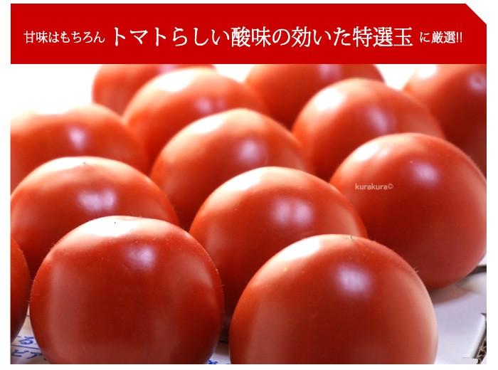 手詰めした真っ赤なトマト