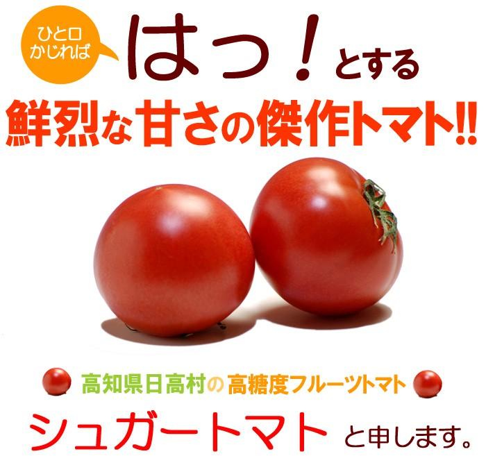 傑作フルーツトマト「シュガートマト」