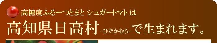 高知県日高村の紹介